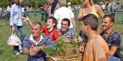 Diari dels Bolets – Festes dels bolets 2010
