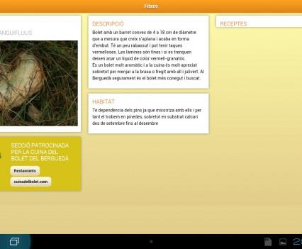 Screenshot_2013-10-11-20-33-13