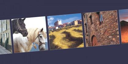 Calendari Avià 2009