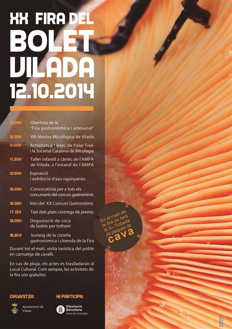 Fira Bolet Vilada 2014 Cartell (Large)